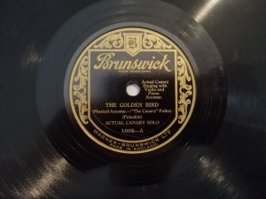 ACTUAL CANARY SOLO THE GOLDEN BIRD Brunswick 1008a
