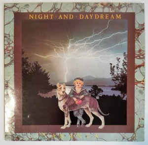 Ananta - Night and Daydream LP winyl stan dosk